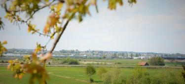 Blick auf Burgau