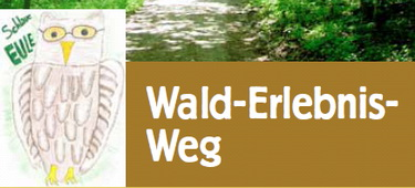 Wald-Erlebnis-Weg