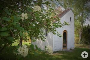 Kapelle Maria Königin Bild in Limbach
